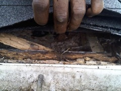 Canton's Best Gutter Cleaners' can replace rotted fascia and soffitt